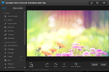 Adobe Photoshop Express Editor su Ubuntu Linux