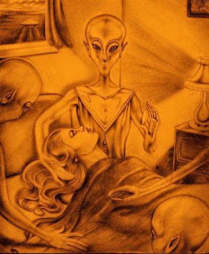 What You Are Not Being Told About The Mystifying Phenomenon Of Aliennephilim Abductions