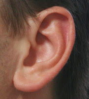 Ear Reference