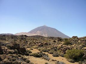 https://picasaweb.google.com/111896560775944191769/Tenerife2012