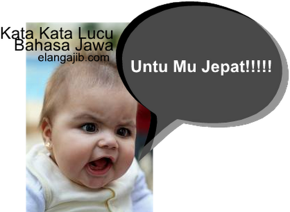 Status Lucu Dalam Bahasa Jawa | Kata Kata Lucu
