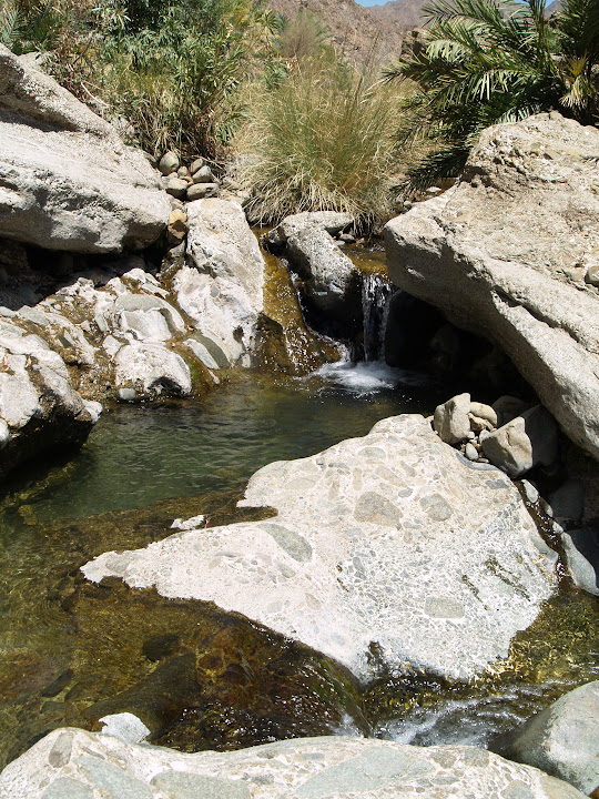A gentle waterfall in Wadi Jazira.