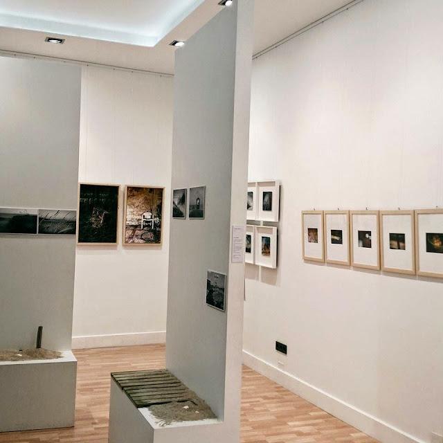 Exposición Territorios,Galería de Arte Besada