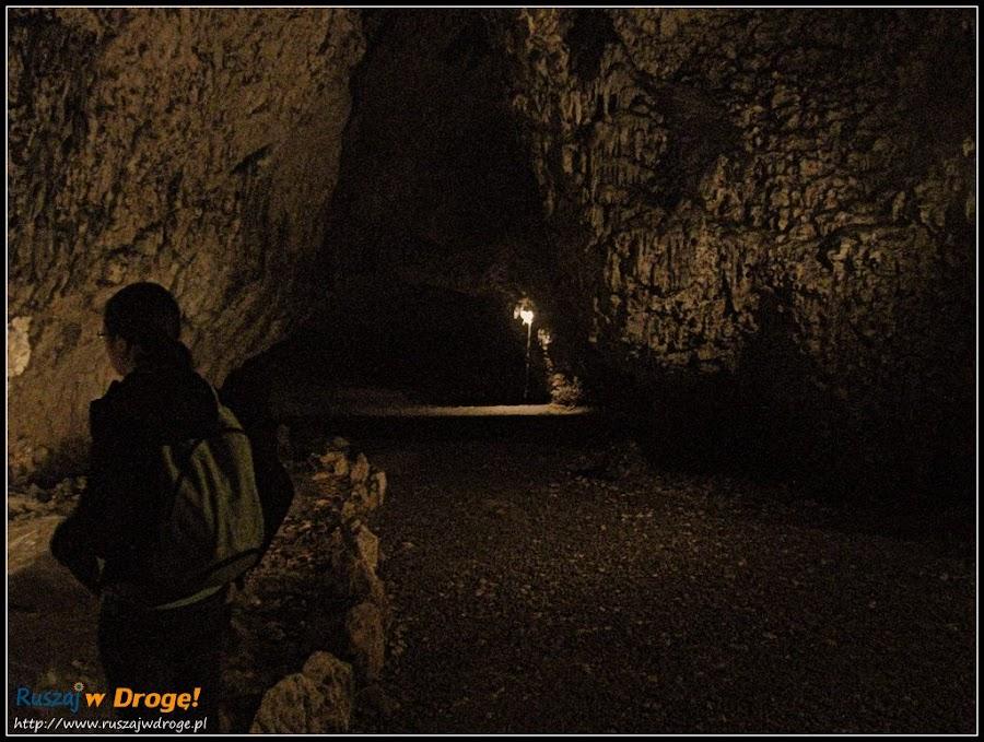 w jaskini nietoperzowej