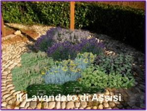 Progetti giardini online gratis Progetti giardini privati, progetti piccoli giardini privati ...