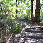 Timber steps near Boronia Ave (343924)