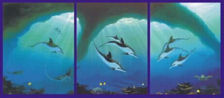 animaatjes-dolfijn-10064.jpg