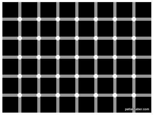 siyah-noktalari-say
