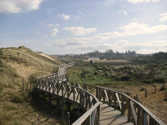 Senda dunas de Loredo