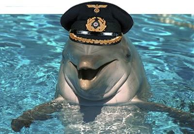 Lesbian Dolphins 83