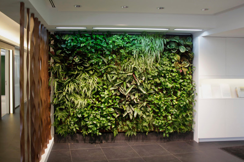 Jard n vertical interior leafbox en madrid urbanarbolismo for Jardin vertical interior casero