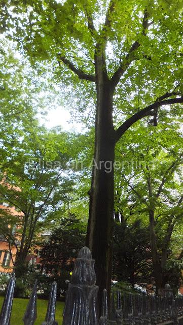 Beacon Hill, Boston, Elisa N, Blog de Viajes, Lifestyle, Travel