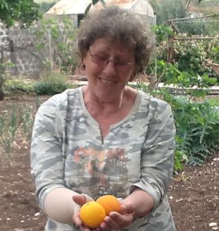 Sheila Brodie