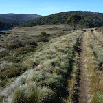 Cascade trail on the western side of Cascade Creek (281924)