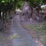 The metal footpath behind Burning Palms Beach (31516)