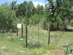 A fenced-off area for Aspen regeneration along the Mogollon Rim  (Photo by E. Nelson)