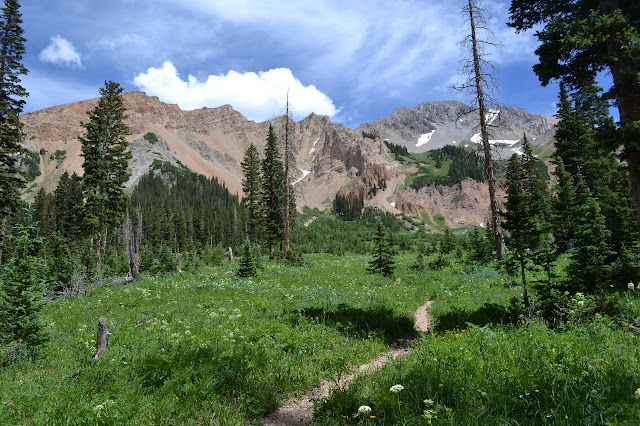 brown layered and grey granite peaks as a backdrop to a meadow full of flower