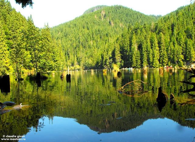 Muntii Hasmas. Lacul Rosu