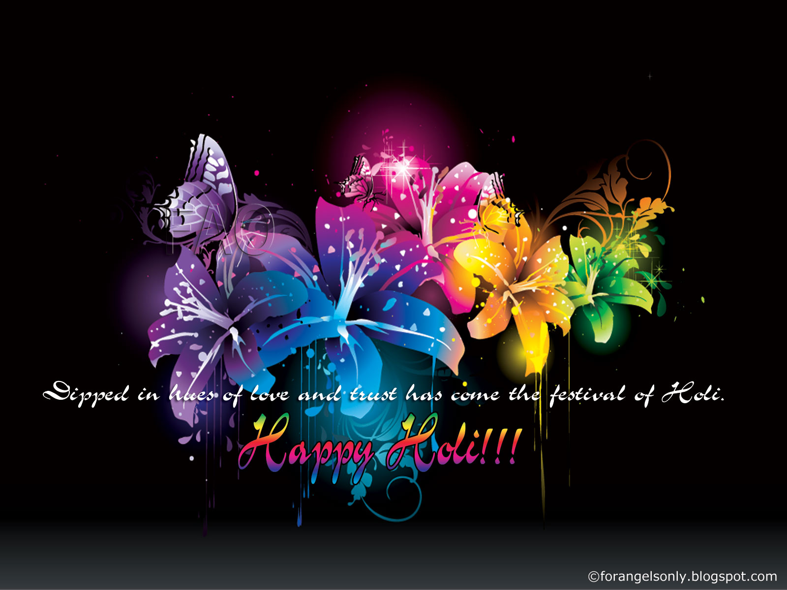 Latest Holi Wallpapers, Greetings and SMS,Holi wallpaper