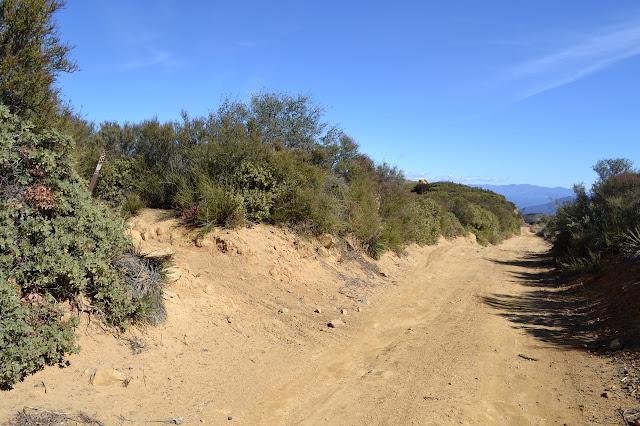 upper trailhead of Tequepis Trail
