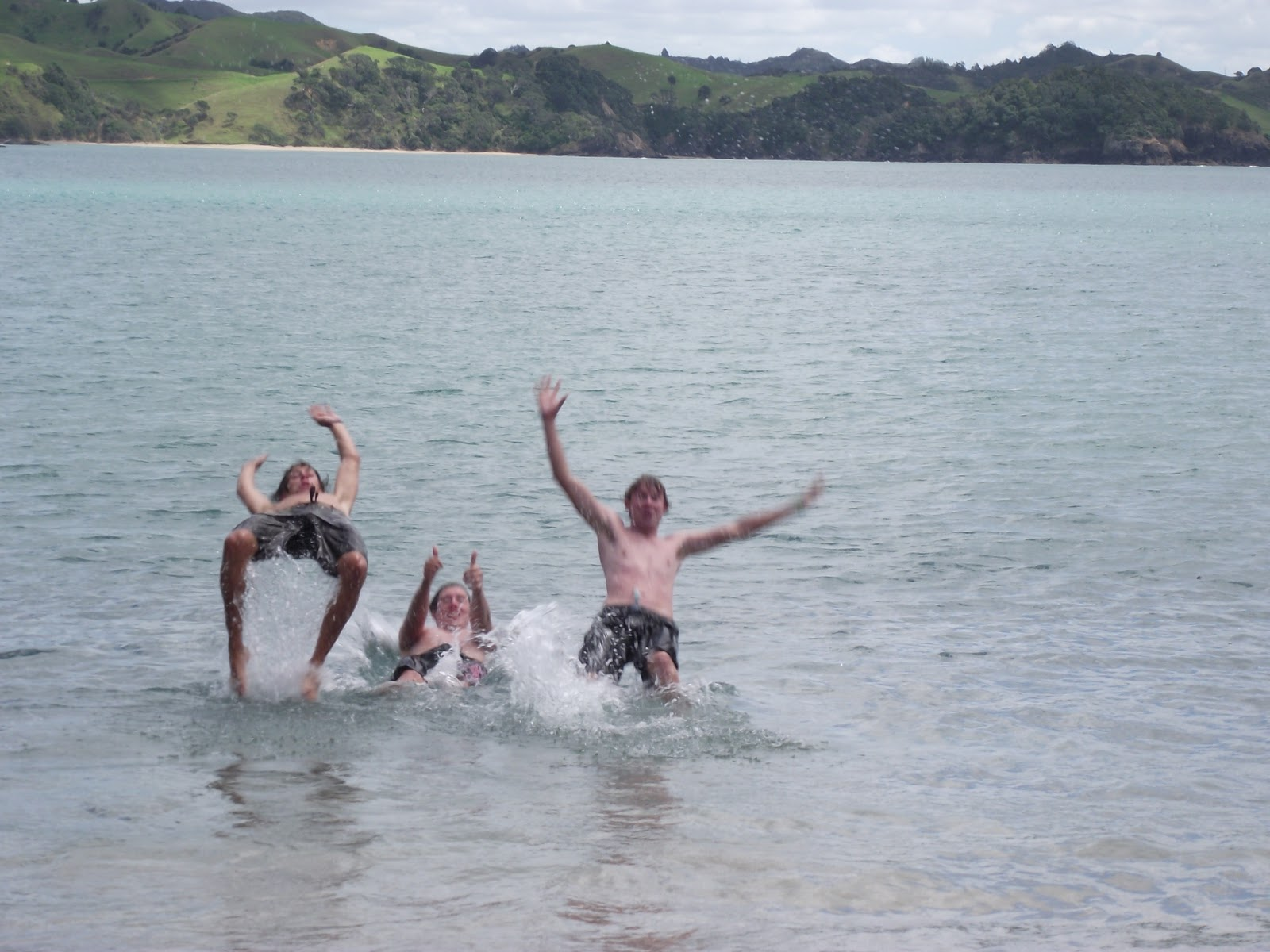 we headed off to paihia at 1430 this afternoon our next stop looking out on the bay of islands we went searching for the cheapest night we could get at a chaggie downunder february 2011 evening
