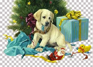 JA-Linda Picken_Holiday Suprrise.jpg