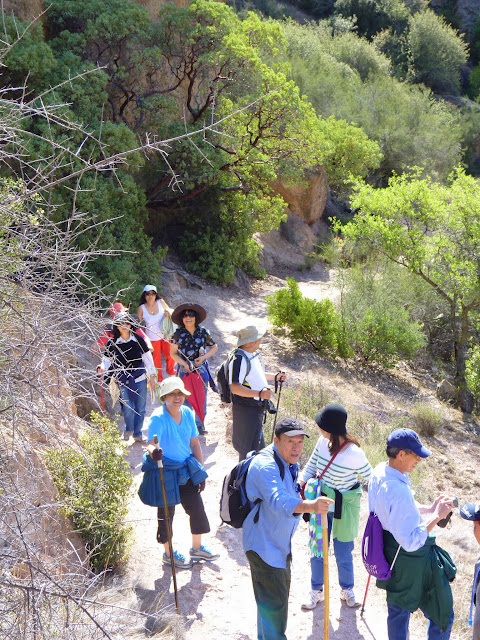 Hiking in Pinnacles Natl Park II
