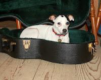 Guitarkasse med hund