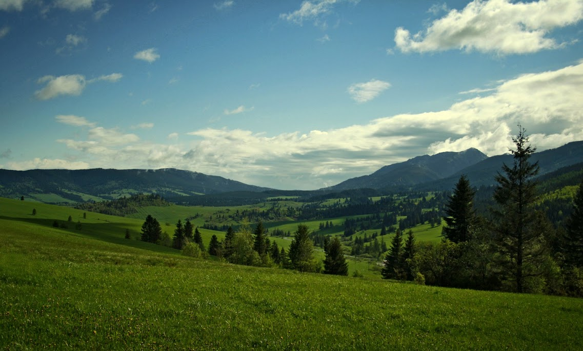 Dolina Borowej Wody
