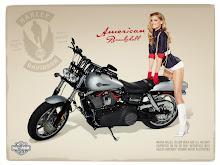 pinup motorbikes 1024x768 wallpaper