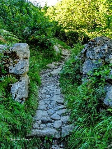 passeando - Passeando por caminhos Celtas - 2014 - Página 8 21