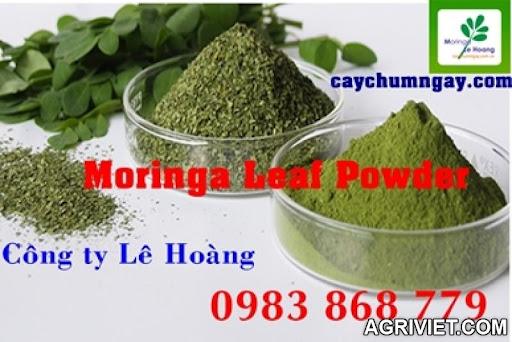 Agriviet.Com-moringa_leaf_powder.jpg