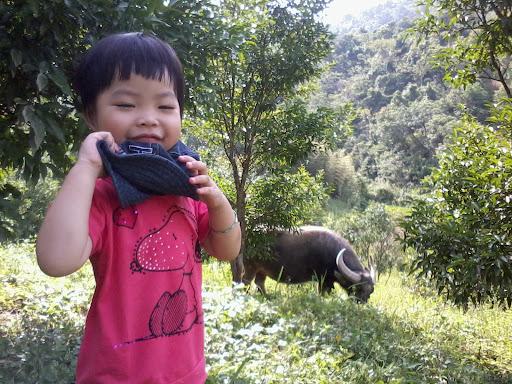 Chau Ma