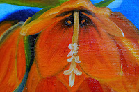 https://picasaweb.google.com/106829846057684010607/OrangeQueenOfLilyFritillaria#6090792510590478722