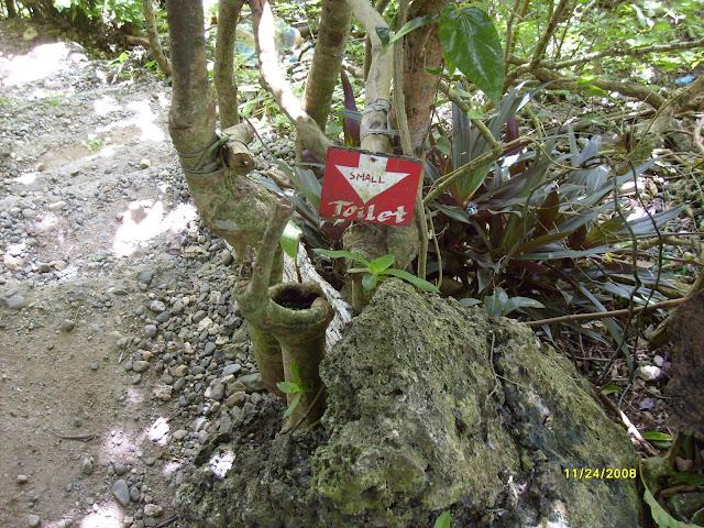 Из зимы в лето. Филиппины 2011 - Страница 6 S6300944