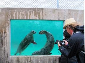 foci la zoo, canada