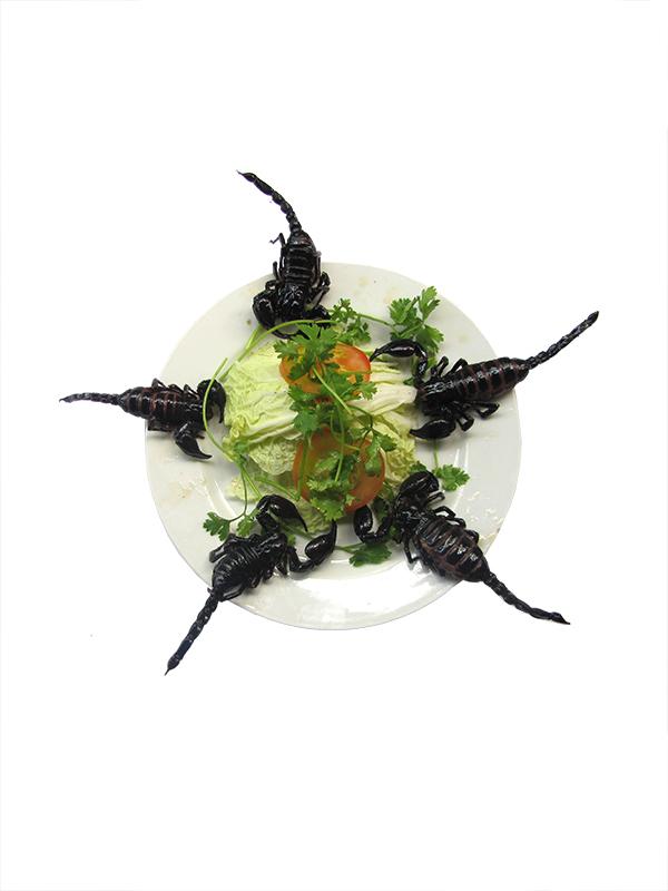 BÒ CẠP CHIÊN GIÒN (Con) Deep fried scorpion    Scorpion frits