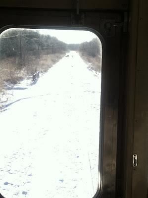 線路の上にエゾシカが…