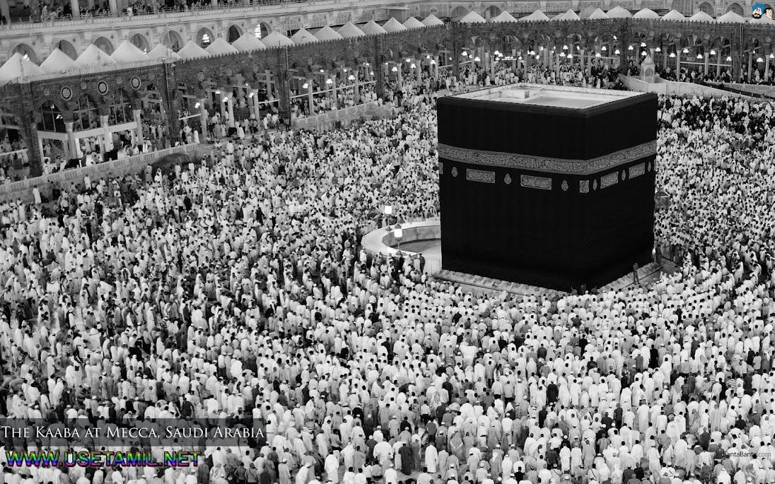 உலகின் அழகிய மசூதிகள் படங்கள்  - Page 4 Mosques-66a