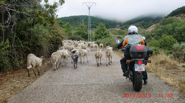 Una vuelta por extremadura, Portugal,Galicia y algun sitio mas. CIMG4400