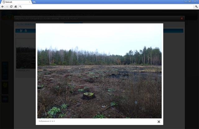 GeoLook Украина. Незаконную вырубку лесов будут контролировать через спутники