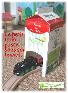tunnel train brique de lait