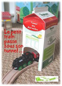 tunnel train brique de lait