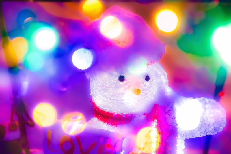 白い恋人パーク イルミネーション 写真8
