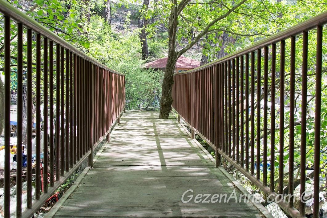 köprü, Kazdağları
