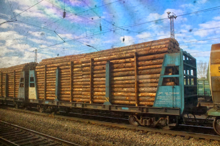 Transporting wood - Russian trains Trans Siberian