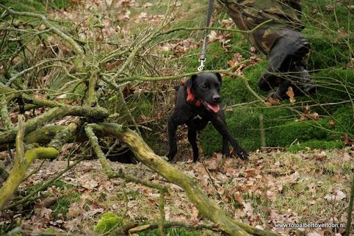 vossenjacht in de Bossen van overloon 18-02-2012 (46).JPG