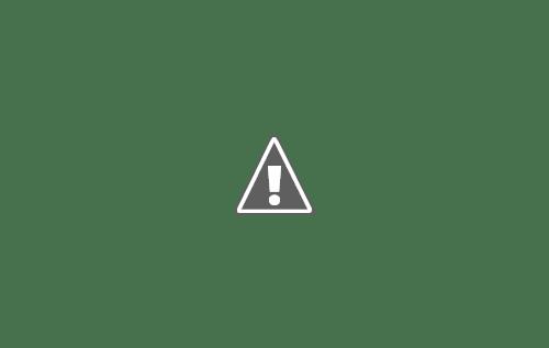 18 05 2013 42+copy - Кошки ))