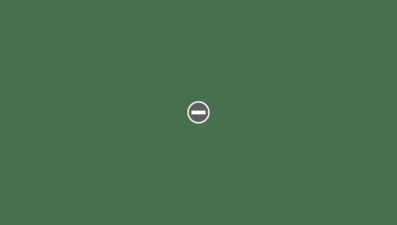 shavette VANTA SOLINGEN RA111 IMG_0137+%2528Custom%2529