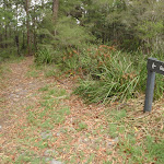 sign at the Southern end of Guringai walk (227398)